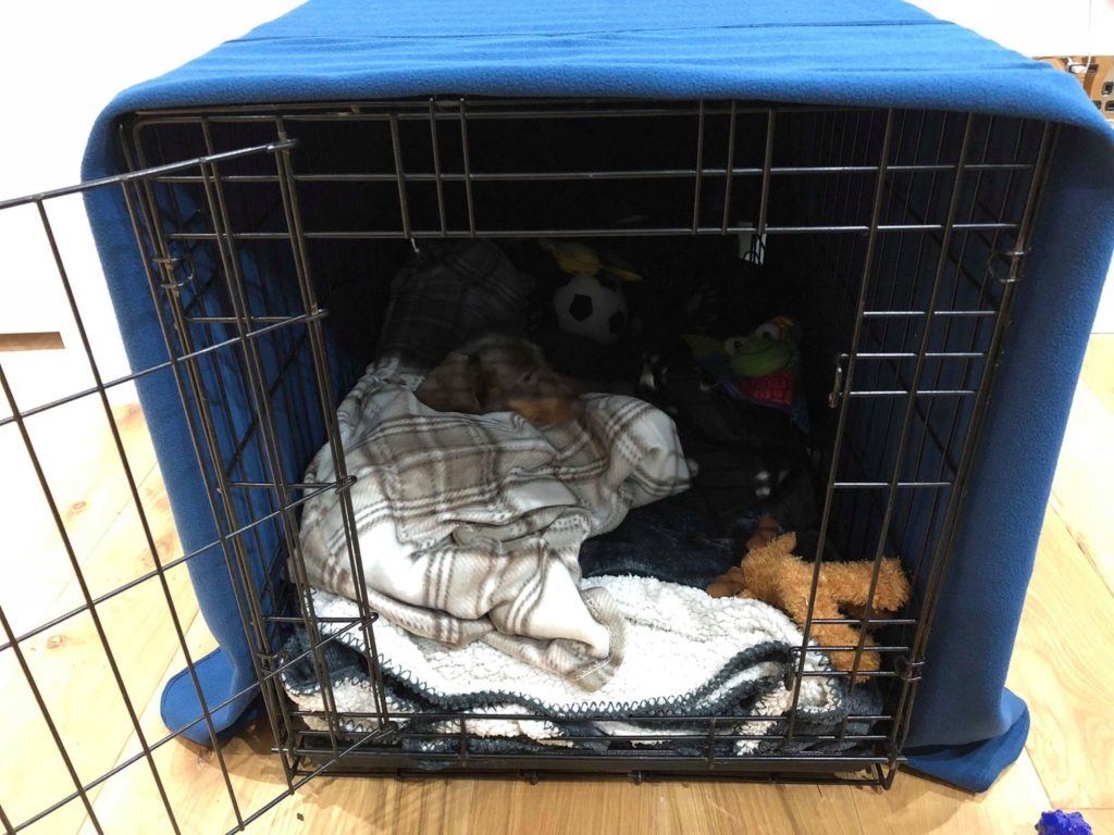 crate for puppies